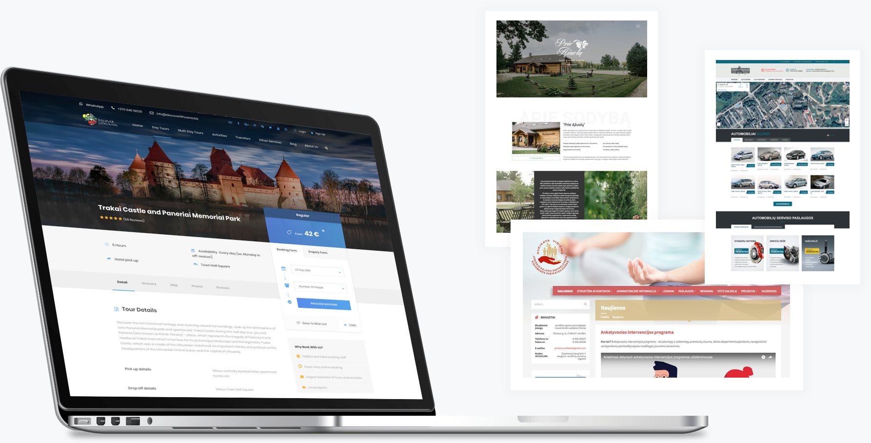internetiniu-svetainiu-kurimas-alytus-8